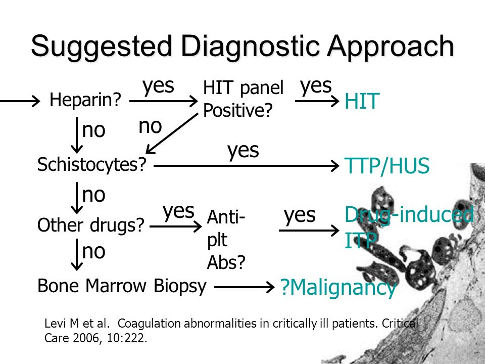 Suggested Diagnostic Approach Heparin. yes no HIT panel Positive.