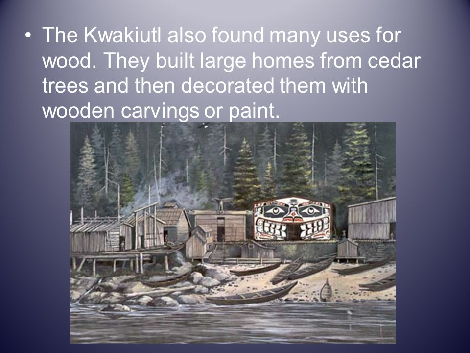 The Kwakiutl also found many uses for wood. They built large homes from cedar trees and then decorated them with wooden carvings or paint.
