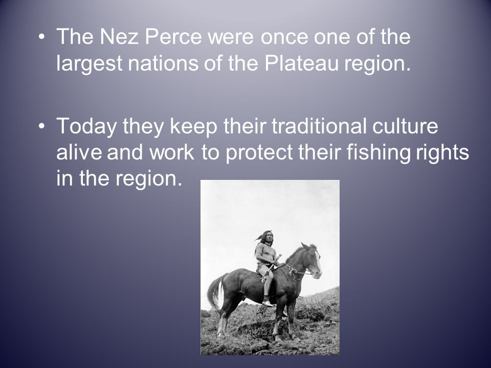 The Nez Perce were once one of the largest nations of the Plateau region. Today they keep their traditional culture alive and work to protect their fi