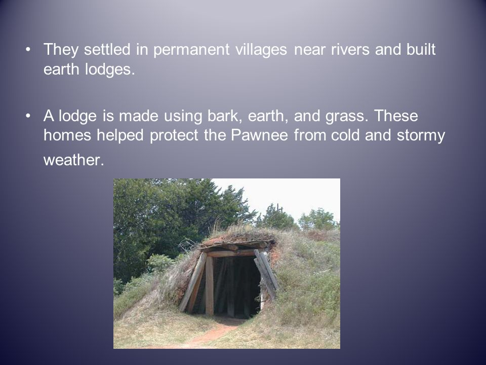 They settled in permanent villages near rivers and built earth lodges. A lodge is made using bark, earth, and grass. These homes helped protect the Pa