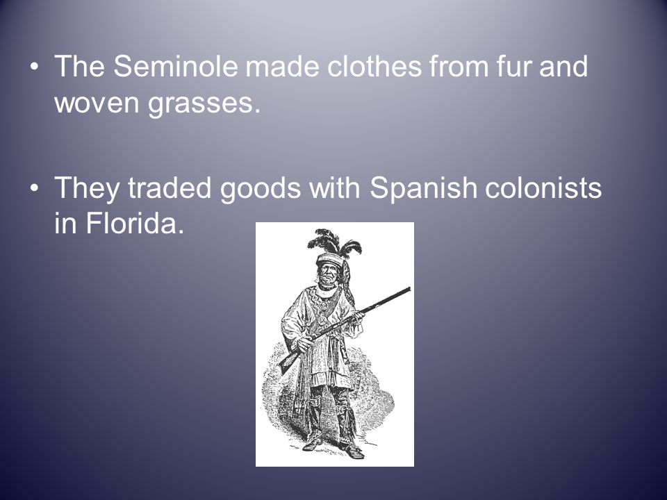 The Seminole made clothes from fur and woven grasses. They traded goods with Spanish colonists in Florida.