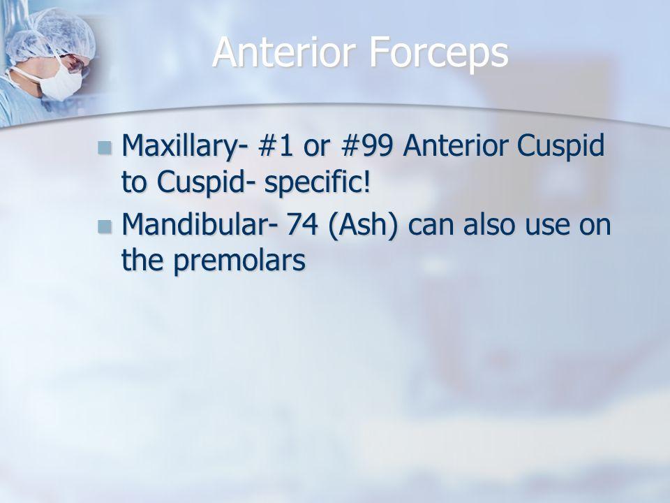 Anterior Forceps Maxillary- #1 or #99 Anterior Cuspid to Cuspid- specific! Maxillary- #1 or #99 Anterior Cuspid to Cuspid- specific! Mandibular- 74 (A