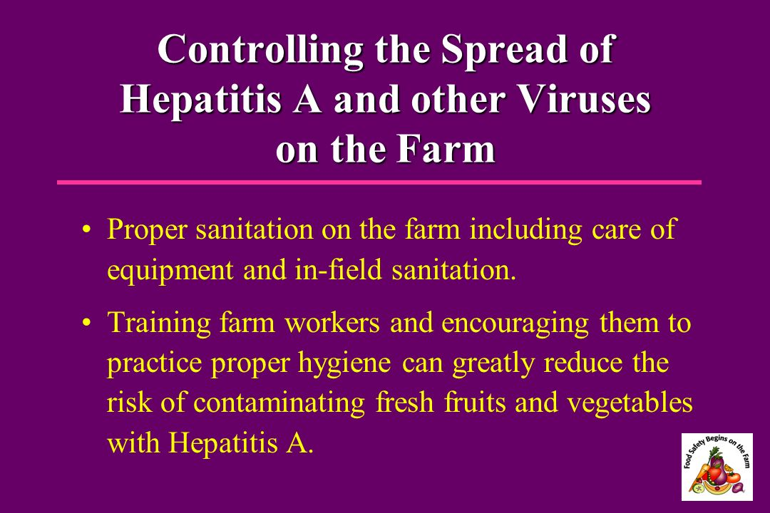 Controlling the Spread of Hepatitis A and other Viruses on the Farm Proper sanitation on the farm including care of equipment and in-field sanitation.