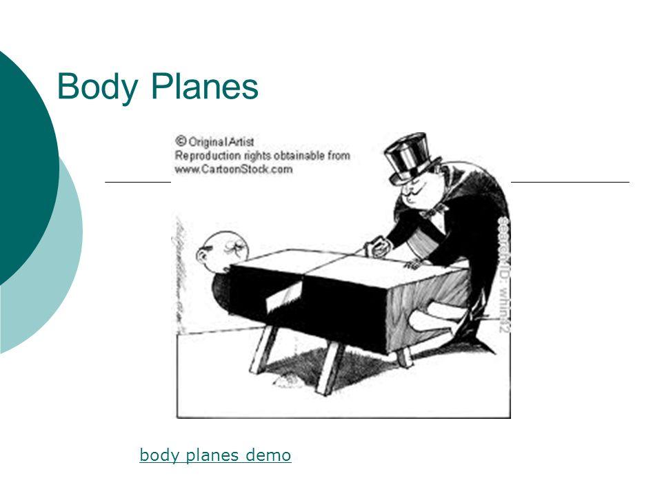 Body Planes body planes demo