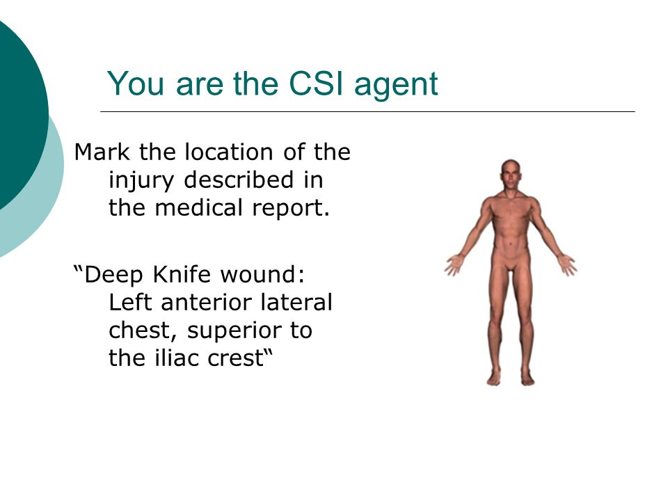 You are the CSI agent Mark the location of the injury described in the medical report. Deep Knife wound: Left anterior lateral chest, superior to the