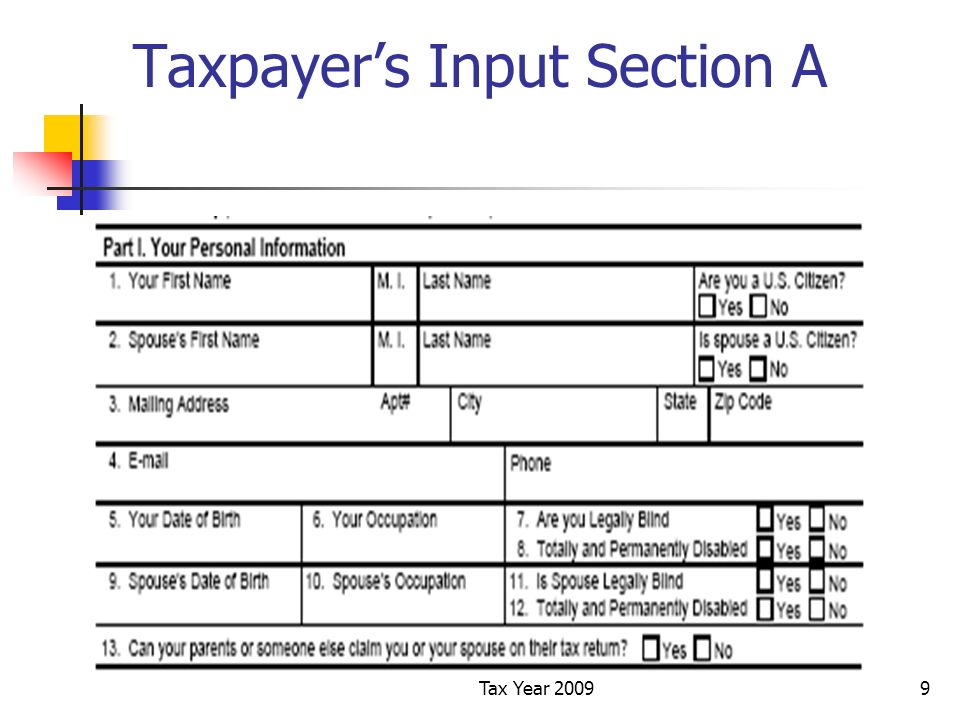 Tax Year 20099 Taxpayers Input Section A
