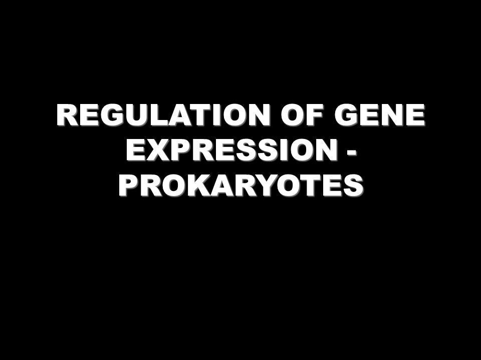 REGULATION OF GENE EXPRESSION - PROKARYOTES