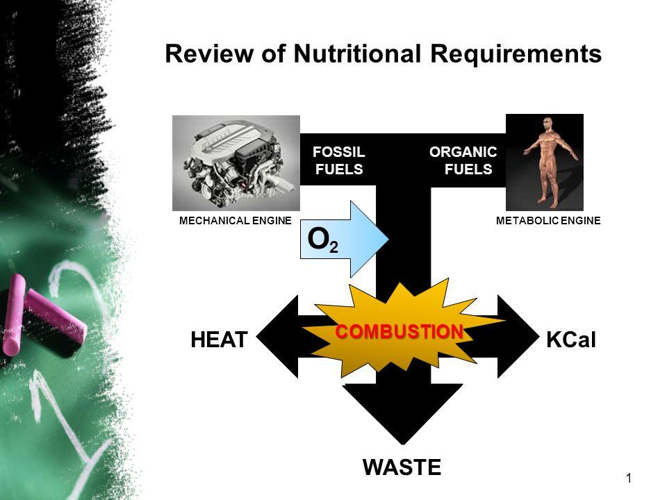 Nutrition in Acute Kidney Injury Antonio R. Paraiso, MD, FPCP, FPSN Medical Specialist IV, NKTI Asst. Professor, College of Medicine, UERMMMCI