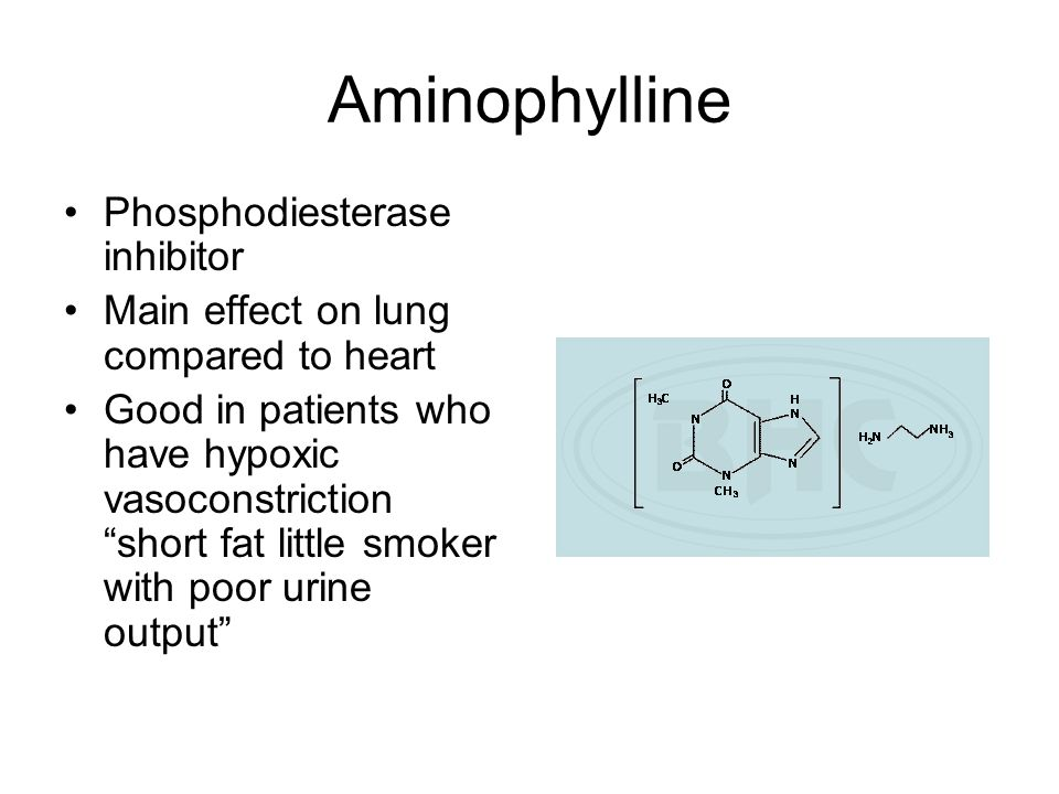 Aminophylline Phosphodiesterase inhibitor Main effect on lung compared to heart Good in patients who have hypoxic vasoconstriction short fat little sm