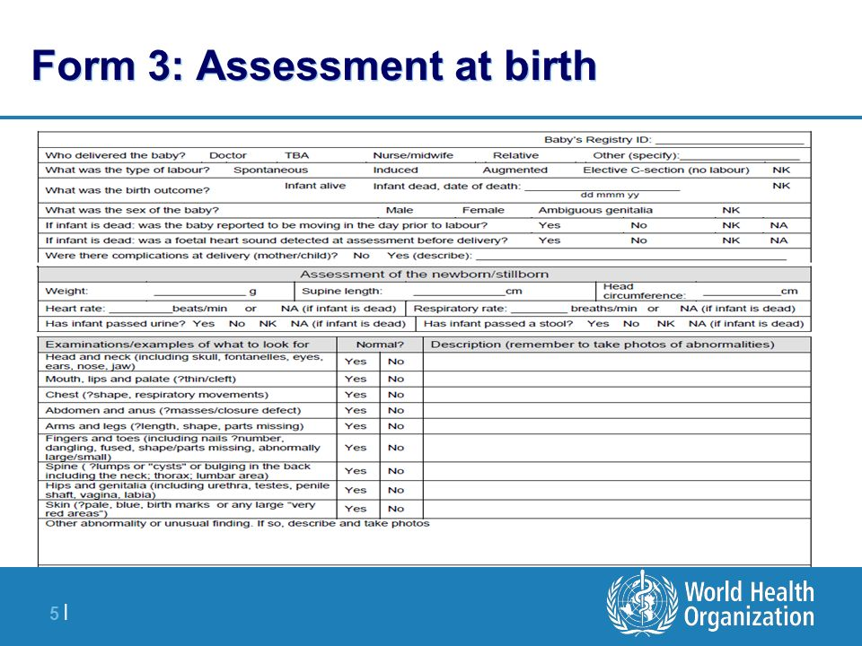 5 |5 | Form 3: Assessment at birth