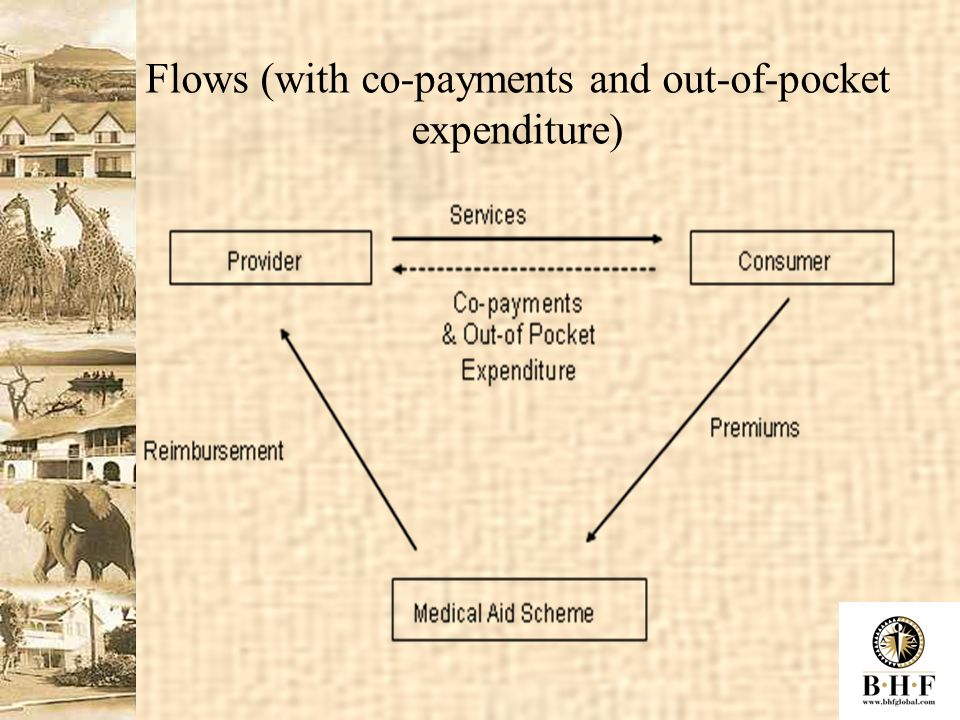 Flows (with co-payments and out-of-pocket expenditure)