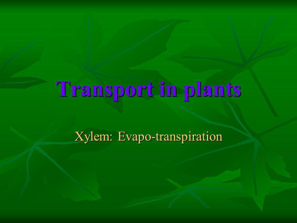 Transport in plants Xylem: Evapo-transpiration
