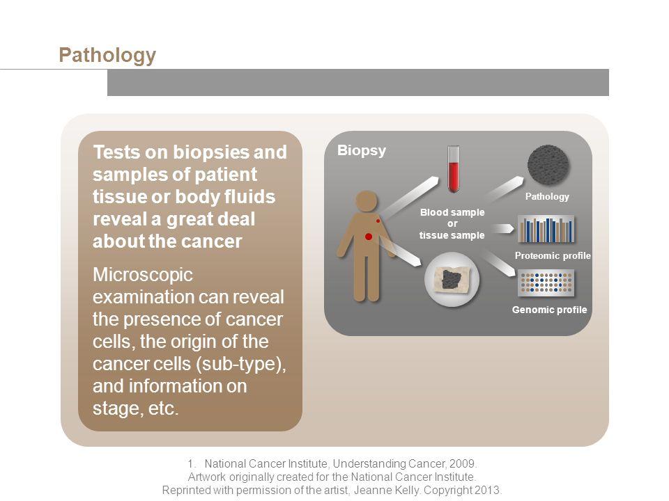 Pathology 1.National Cancer Institute, Understanding Cancer, 2009.