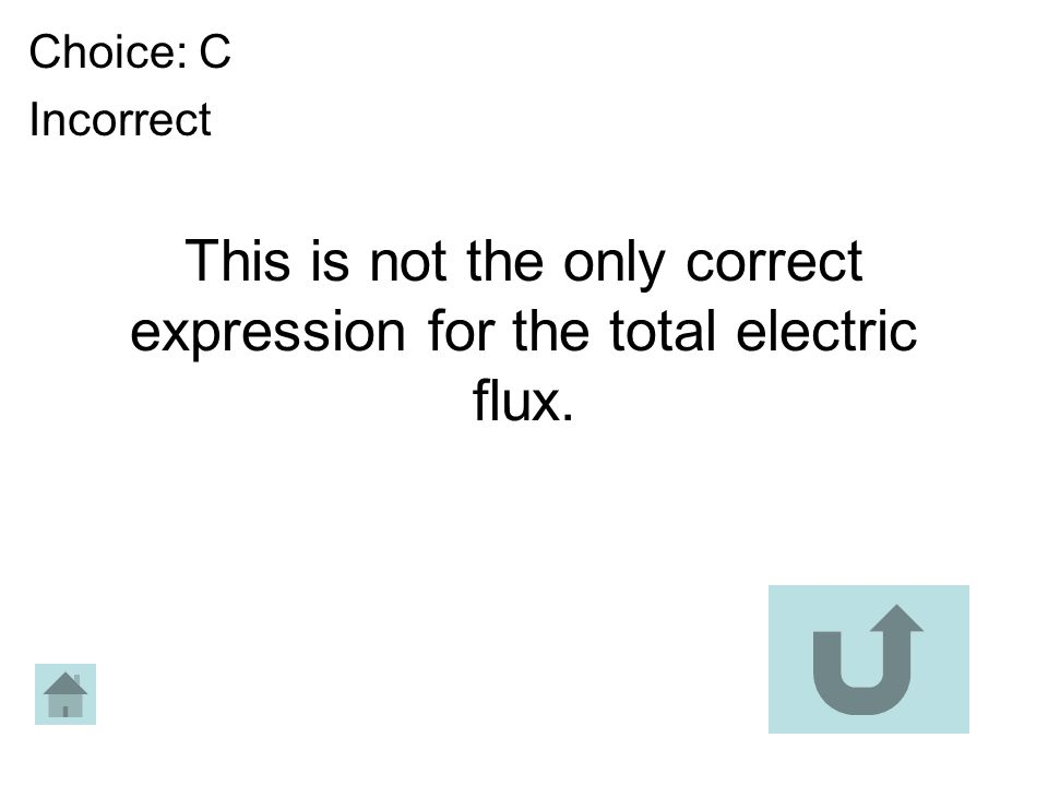 This is not the only correct expression for the total electric flux. Choice: C Incorrect