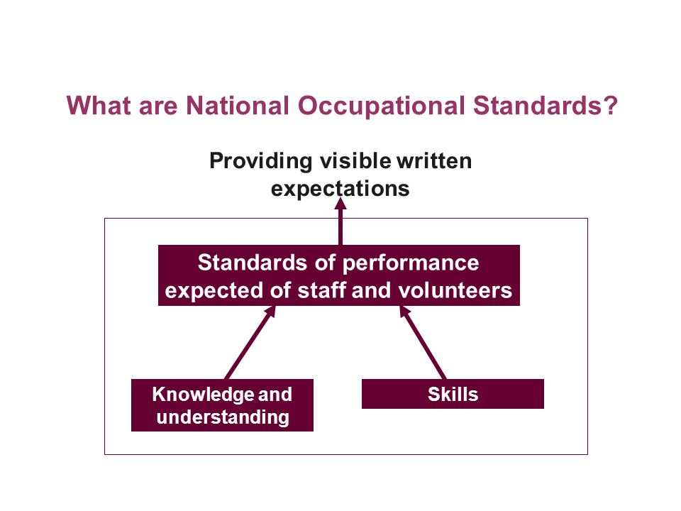 Knowledge and understanding Skills Standards of performance expected of staff and volunteers Providing visible written expectations What are National