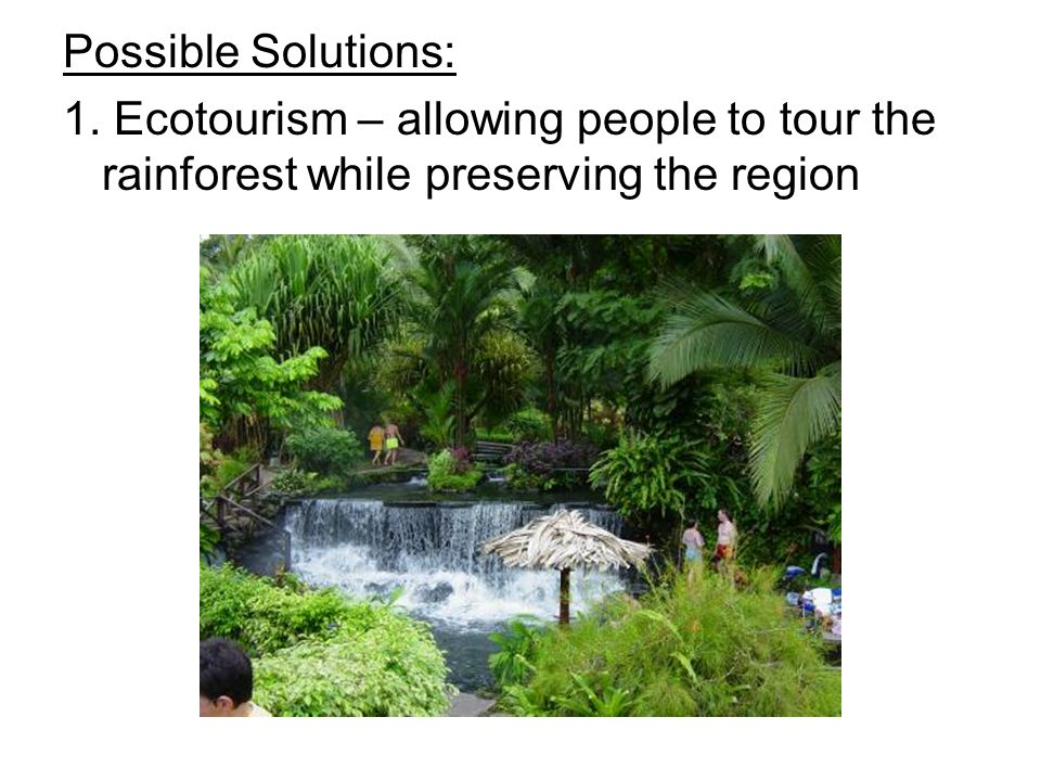 Possible Solutions: 1. Ecotourism – allowing people to tour the rainforest while preserving the region