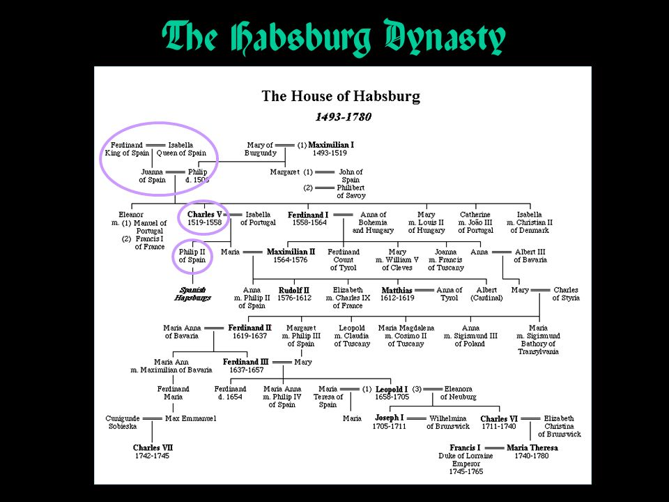 The Habsburg Dynasty