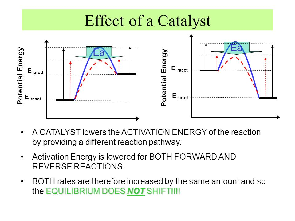 Effect of a Catalyst Potential Energy E prod E react E prod E react A CATALYST lowers the ACTIVATION ENERGY of the reaction by providing a different r