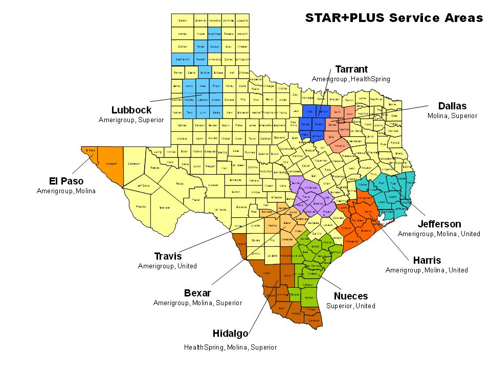 Page 21 21 STAR+PLUS Managed Care Service Areas