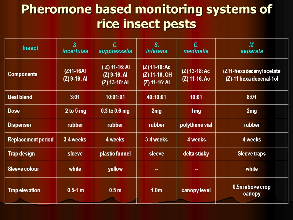 Pheromone based monitoring systems of rice insect pests Insect S. incertulas C. suppressalis S. inferens C. medinalis M. separata Components (Z11-16AI
