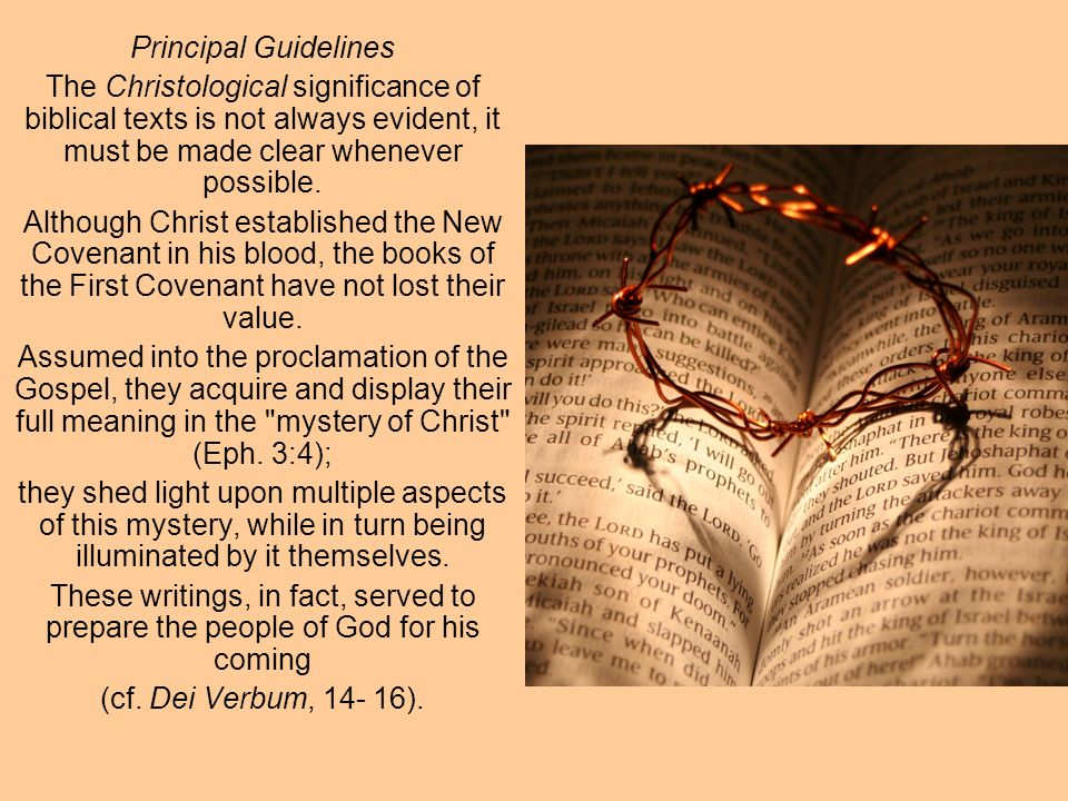 Principal Guidelines Although each book of the Bible was written with its own particular end in view and has its own specific meaning, it takes on a deeper meaning when it becomes part of the canon as a whole.