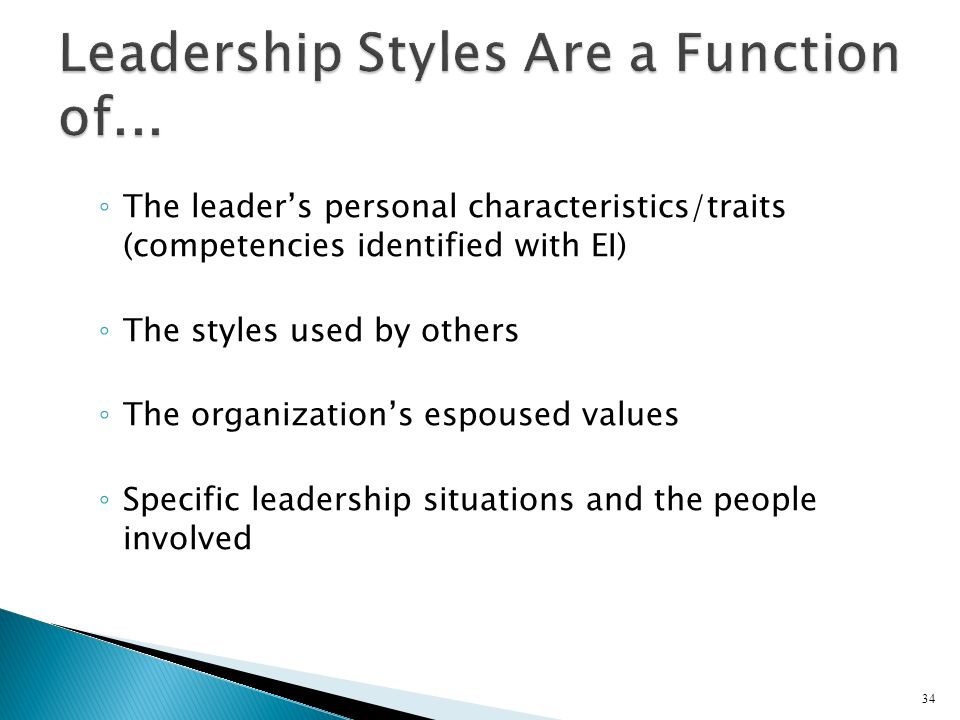 The leaders personal characteristics/traits (competencies identified with EI) The styles used by others The organizations espoused values Specific lea