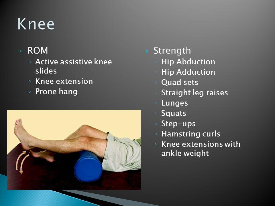 ROM Active assistive knee slides Knee extension Prone hang Strength Hip Abduction Hip Adduction Quad sets Straight leg raises Lunges Squats Step-ups H