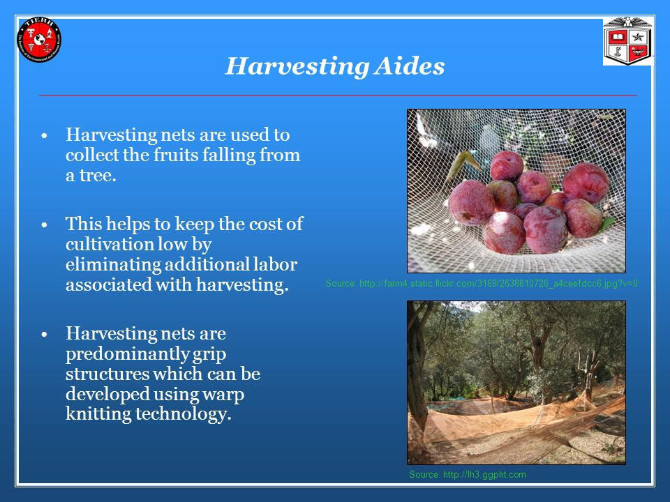 Harvesting Aides Harvesting nets are used to collect the fruits falling from a tree.