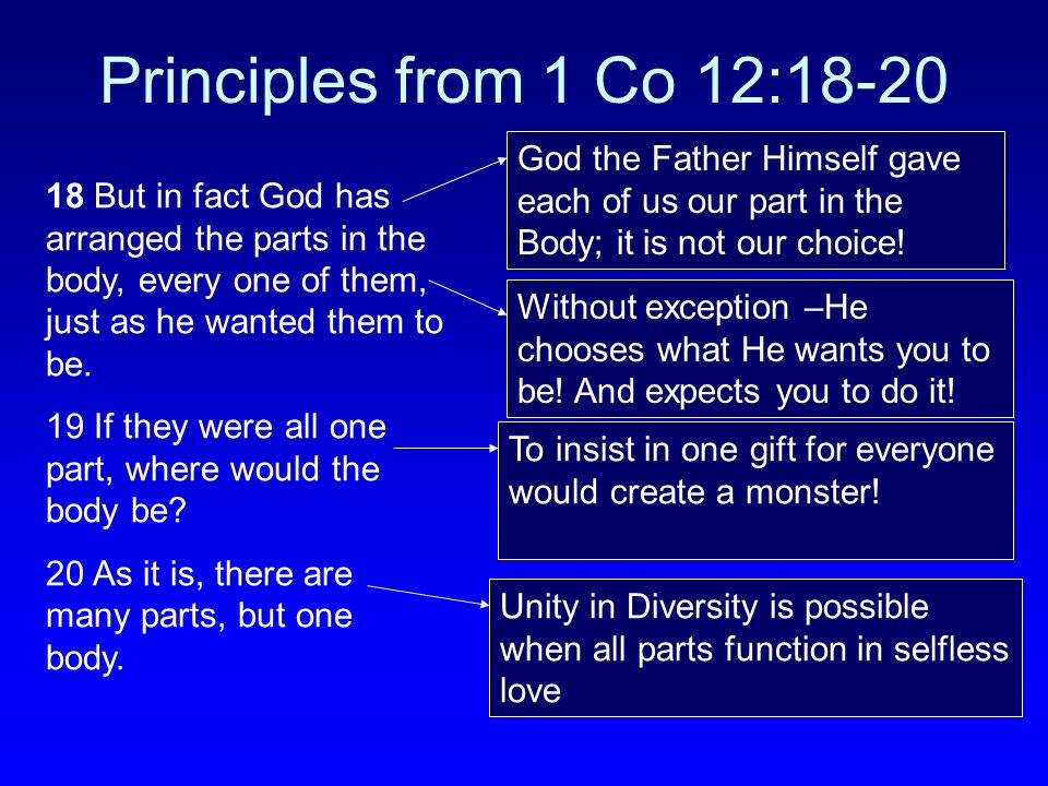 Principles from 1 Co 12:18-20 18 But in fact God has arranged the parts in the body, every one of them, just as he wanted them to be. 19 If they were