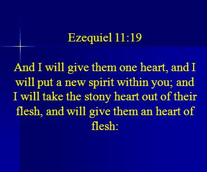 Ezequiel 11:19 And I will give them one heart, and I will put a new spirit within you; and I will take the stony heart out of their flesh, and will gi
