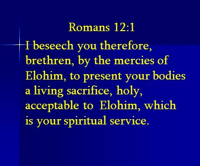 Romans 12:1 I beseech you therefore, brethren, by the mercies of Elohim, to present your bodies a living sacrifice, holy, acceptable to Elohim, which