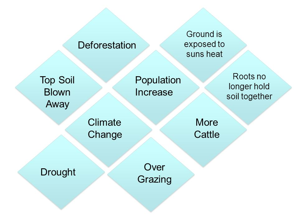 Population Increase Climate Change More Cattle Deforestation Over Grazing Top Soil Blown Away Roots no longer hold soil together Drought Ground is exposed to suns heat
