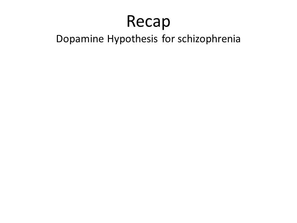 Recap Dopamine Hypothesis for schizophrenia