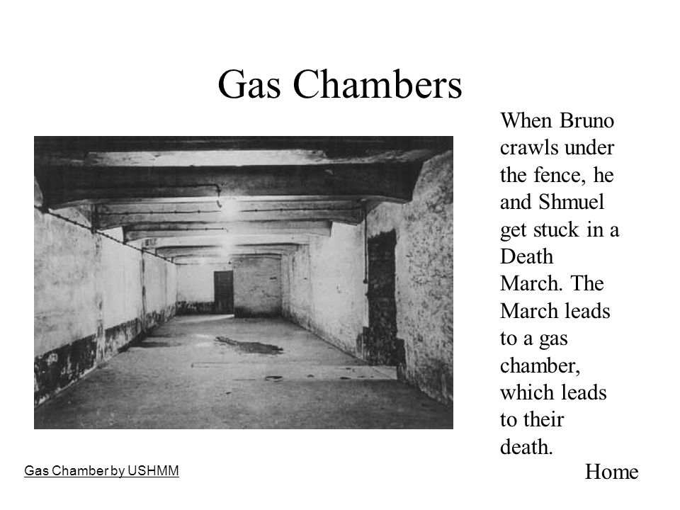 Gas Chambers Gas Chamber by USHMM When Bruno crawls under the fence, he and Shmuel get stuck in a Death March. The March leads to a gas chamber, which