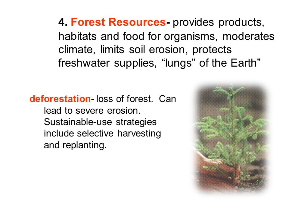4. Forest Resources- provides products, habitats and food for organisms, moderates climate, limits soil erosion, protects freshwater supplies, lungs o