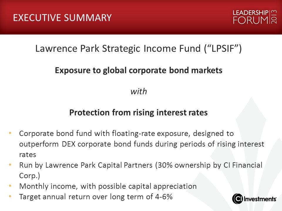 LAWRENCE PARK CAPITAL PARTNERS LTD.Who should invest in the Fund.