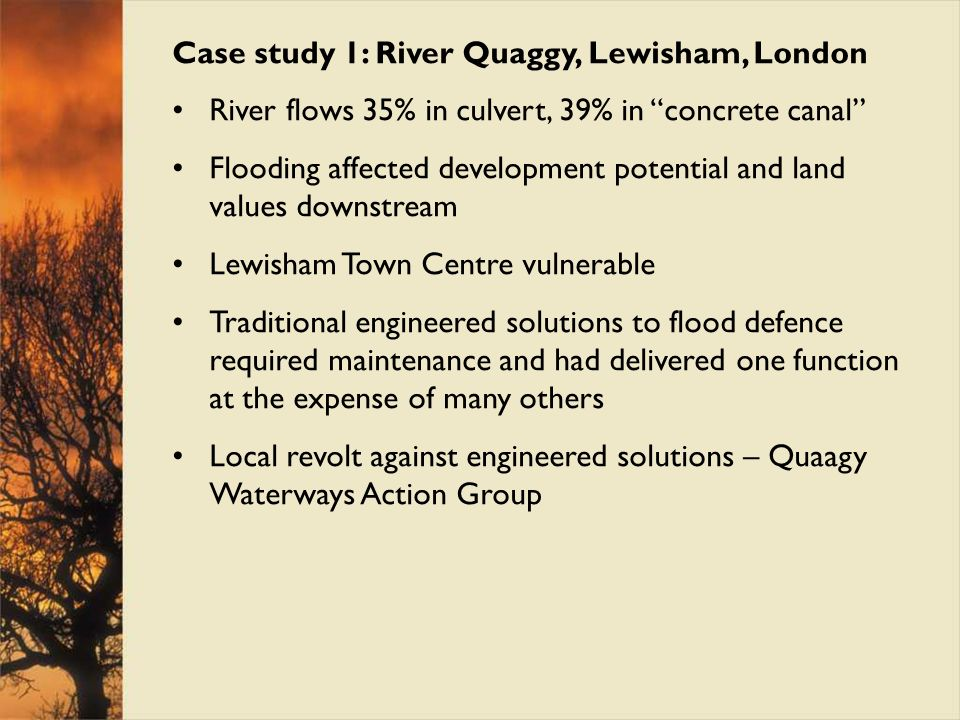 Case study 1: River Quaggy, Lewisham, London River flows 35% in culvert, 39% in concrete canal Flooding affected development potential and land values