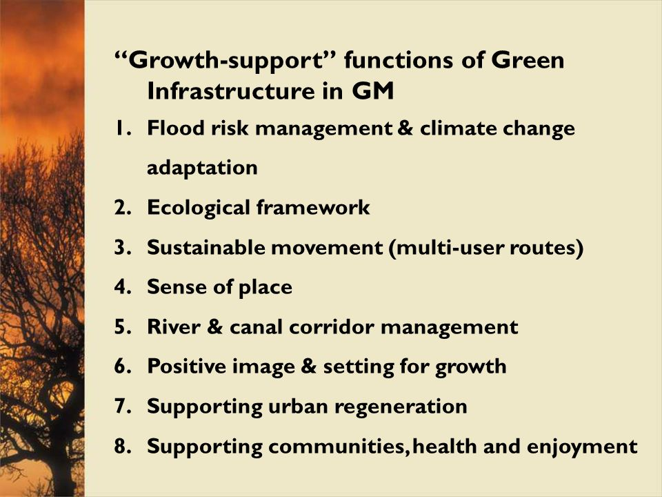 Growth-support functions of Green Infrastructure in GM 1.Flood risk management & climate change adaptation 2.Ecological framework 3.Sustainable moveme