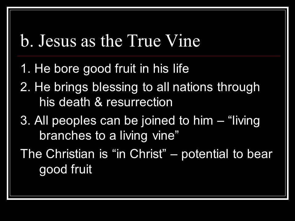 b. Jesus as the True Vine 1. He bore good fruit in his life 2. He brings blessing to all nations through his death & resurrection 3. All peoples can b