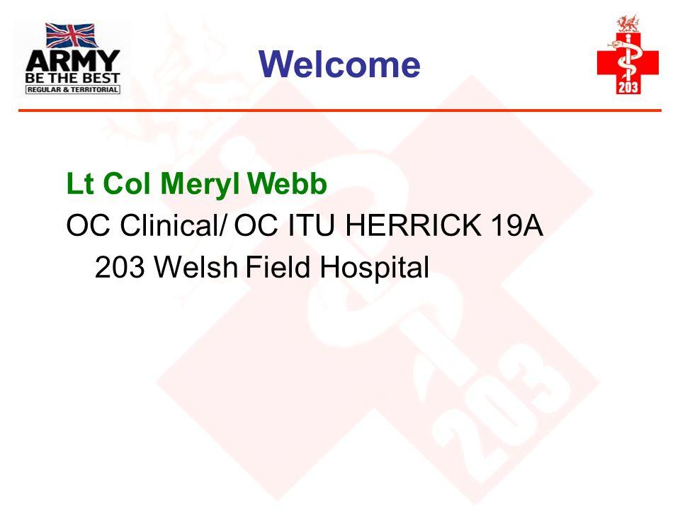 Welcome Lt Col Meryl Webb OC Clinical/ OC ITU HERRICK 19A 203 Welsh Field Hospital