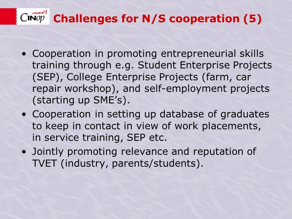 Challenges for N/S cooperation (5) Cooperation in promoting entrepreneurial skills training through e.g.