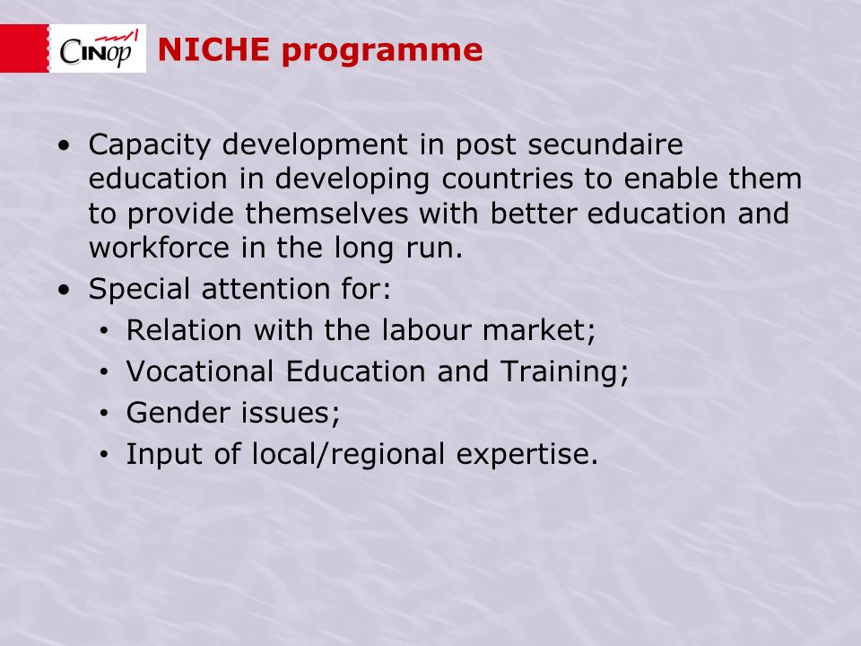 NICHE programme Capacity development in post secundaire education in developing countries to enable them to provide themselves with better education and workforce in the long run.