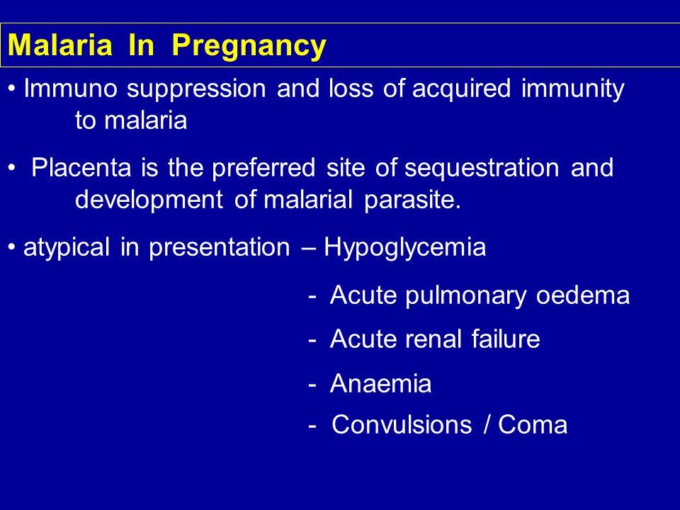 Malaria In Pregnancy Immuno suppression and loss of acquired immunity to malaria Placenta is the preferred site of sequestration and development of ma