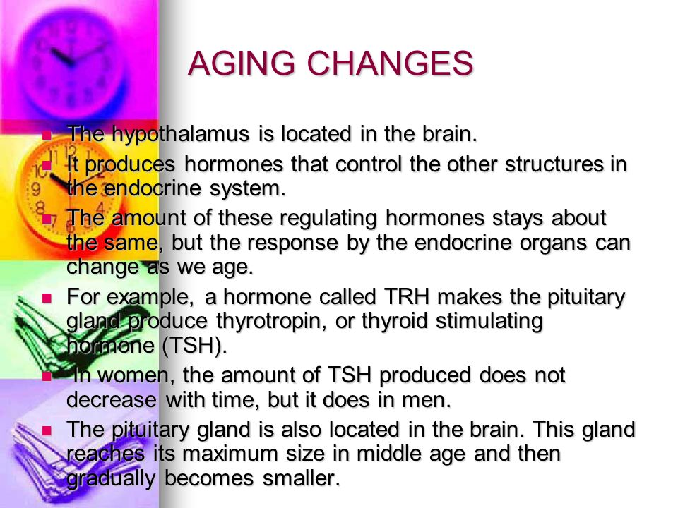 AGING CHANGES The hypothalamus is located in the brain. The hypothalamus is located in the brain. It produces hormones that control the other structur