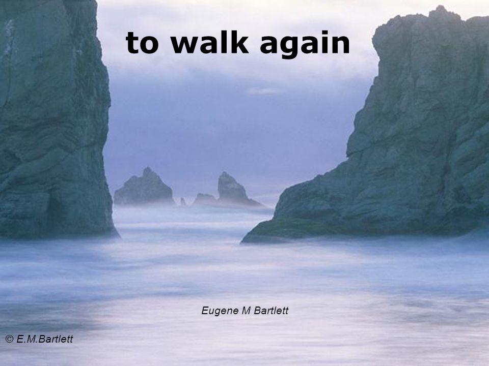to walk again Eugene M Bartlett © E.M.Bartlett