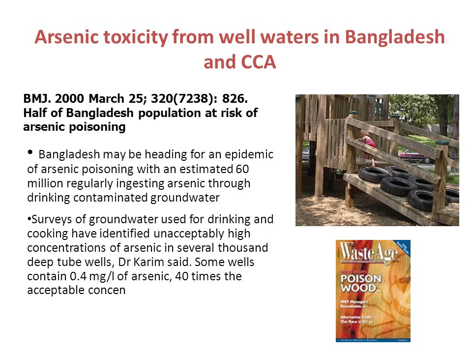 Bhopal, India This presentation is based on the text articles, Bhopal, pp. 347-352, and Chemical Safety in Developing Countries, the lessons of Bhopal
