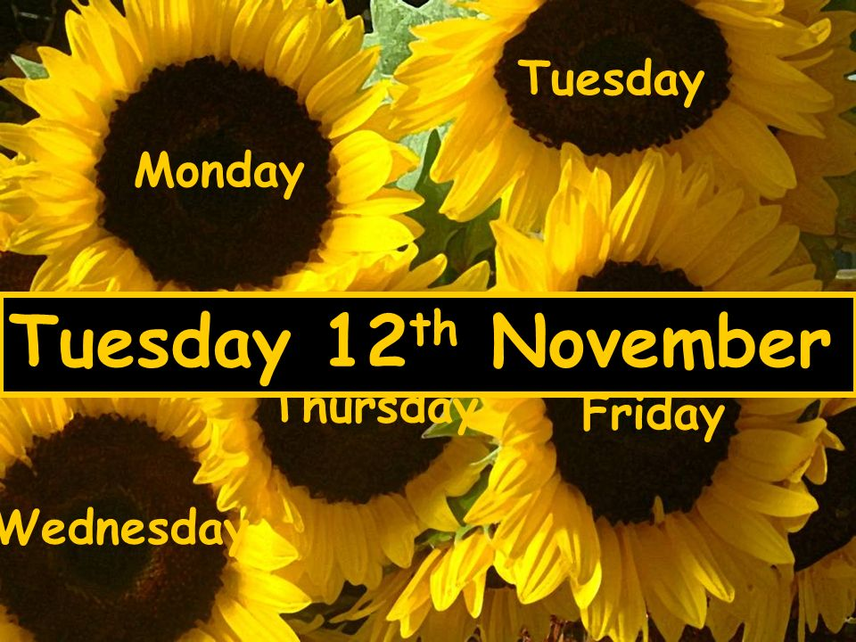 Monday Tuesday Wednesday Thursday Friday Tuesday 12 th November