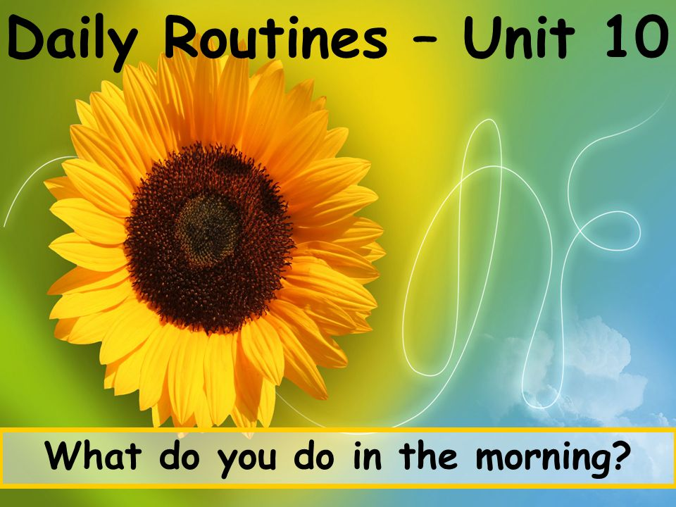 Daily Routines – Unit 10 What do you do in the morning?