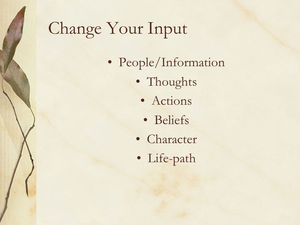 Change Your Input People/Information Thoughts Actions Beliefs Character Life-path
