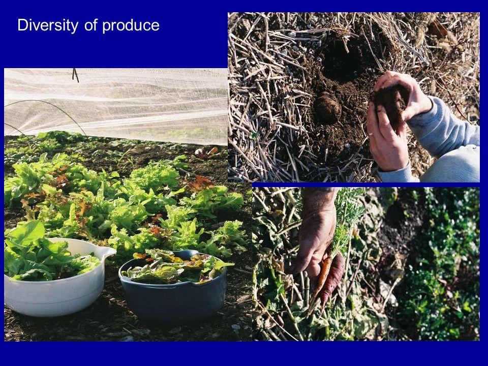 Diversity of produce